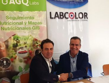 Alliance between AGQ Labs and Labcolor