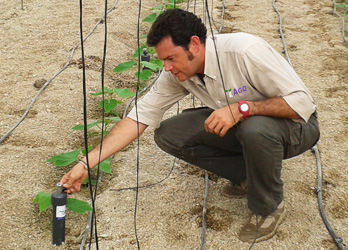 Crop Nutritional Monitoring - AGQ Labs Egypt